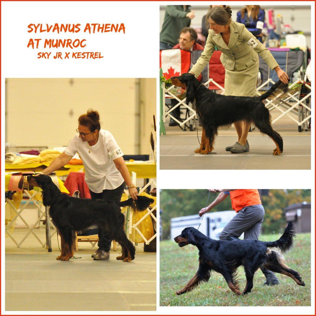 0 Athena
