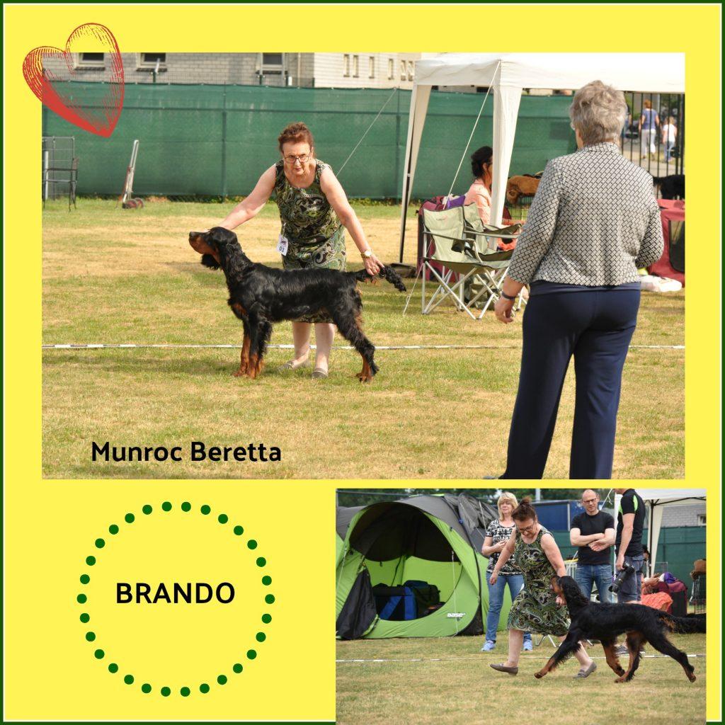 0 coll Brando