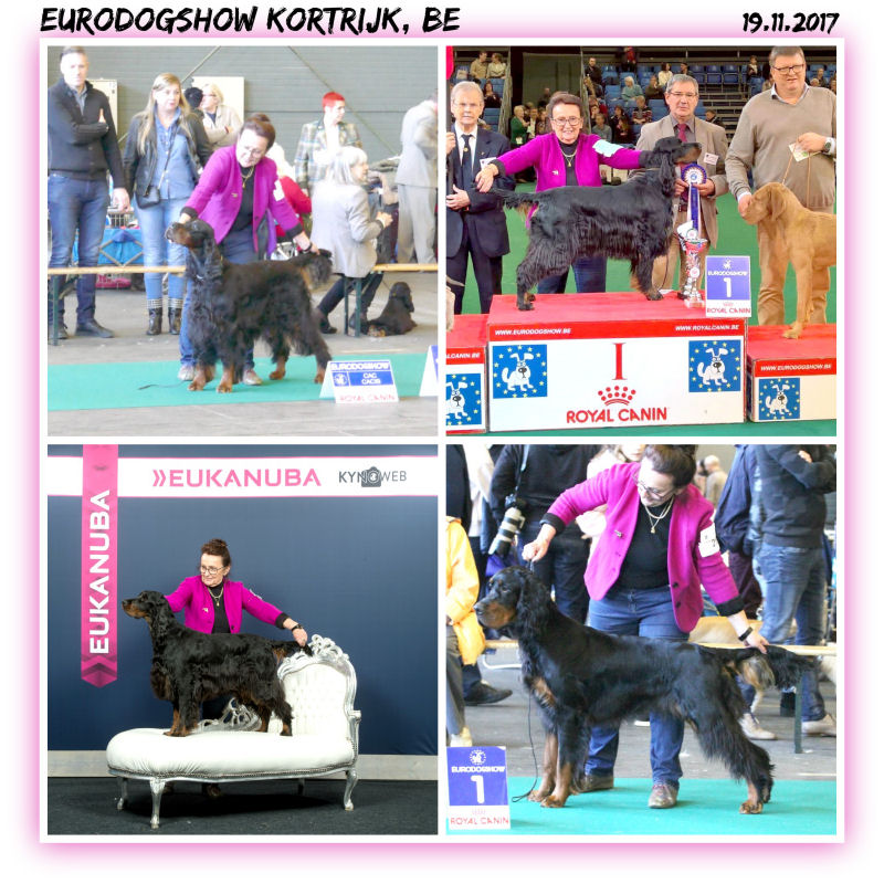 02 Nov 2017 Kortrijk
