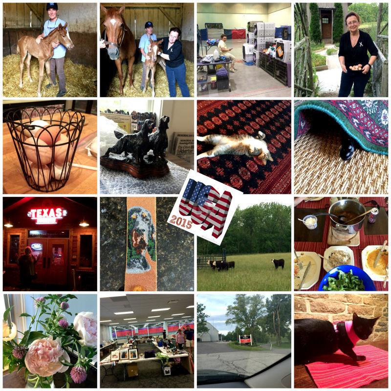 PicMonkey Collage 1800