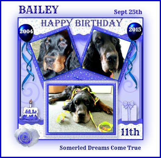 bailey11